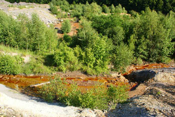 apa rosie cianuri