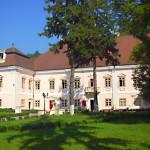 Muzeului Civilizaţiei Dacice şi Romane din Deva