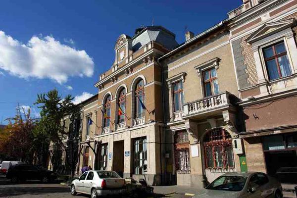 Consiliului Local al municipiului Deva